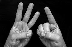 31-Fingers